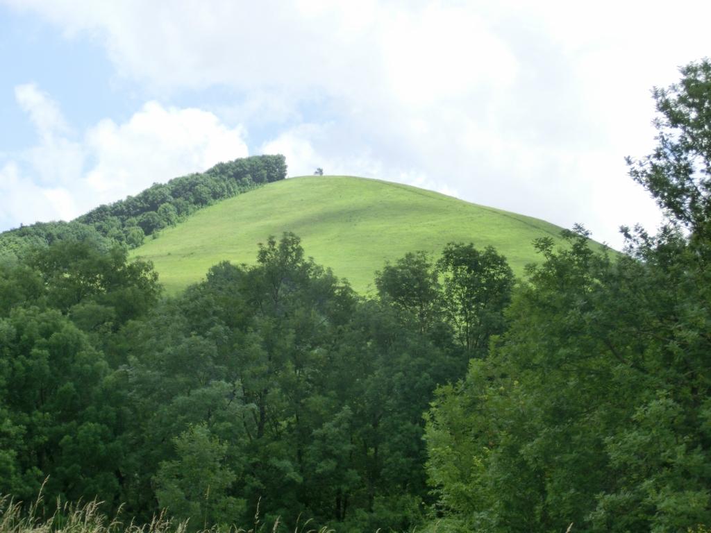 Гора Чубатая