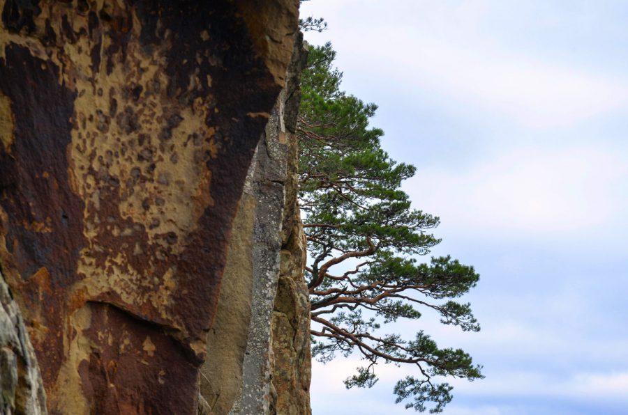 Красные скалы (Наумовские)
