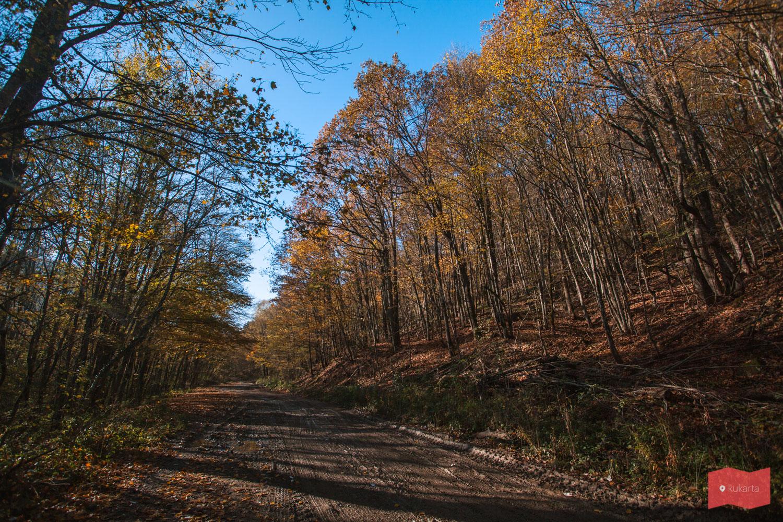 Путь к Красным скалам, Северский район