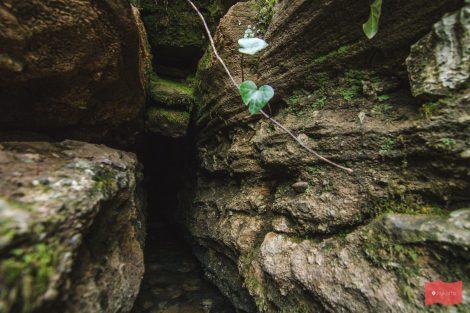 Пещера Университетская