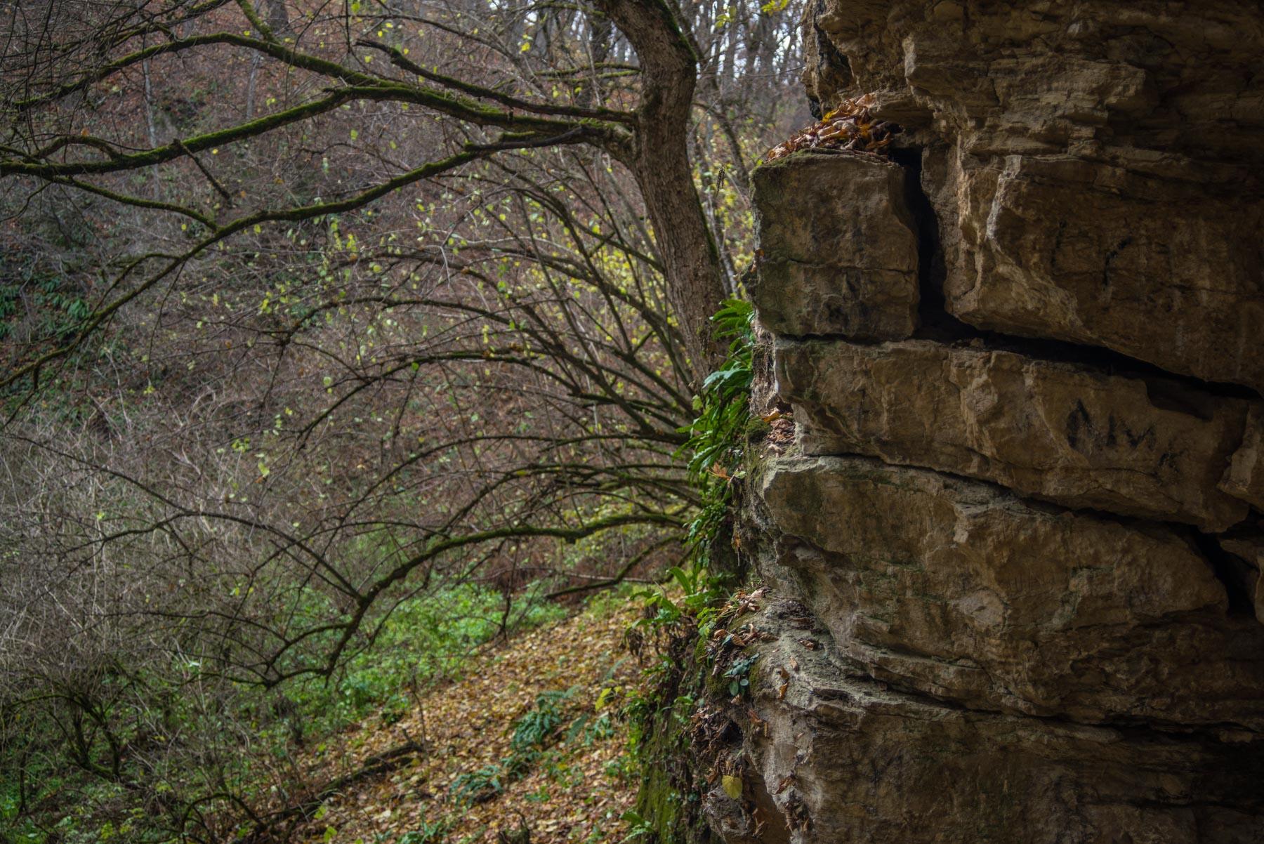 Пещера Аммональная