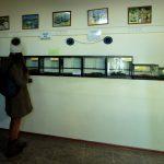 Террариум Сафари-парк Геленджик