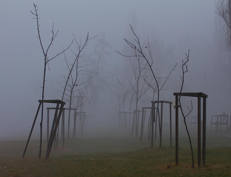 Туман в Краснодаре