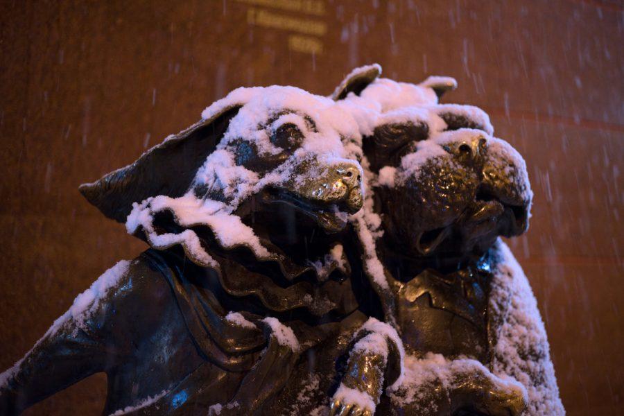 Снег в Краснодаре