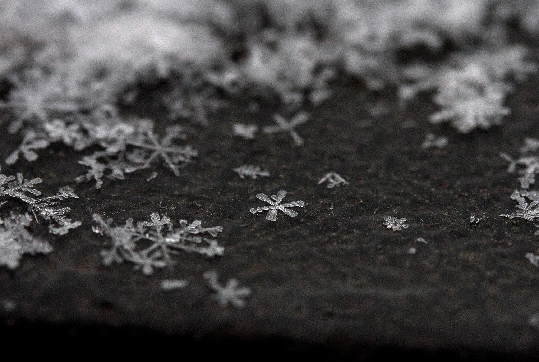 Снег, фото Евгения Маханько