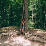 Гебиусские водопады. Дерево желаний