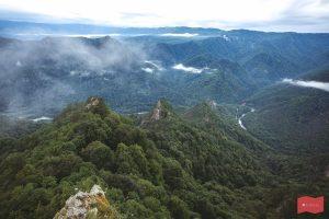 Гора Трезубец, Хамышки