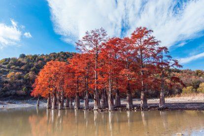 Кипарисовое озеро (Сукко)