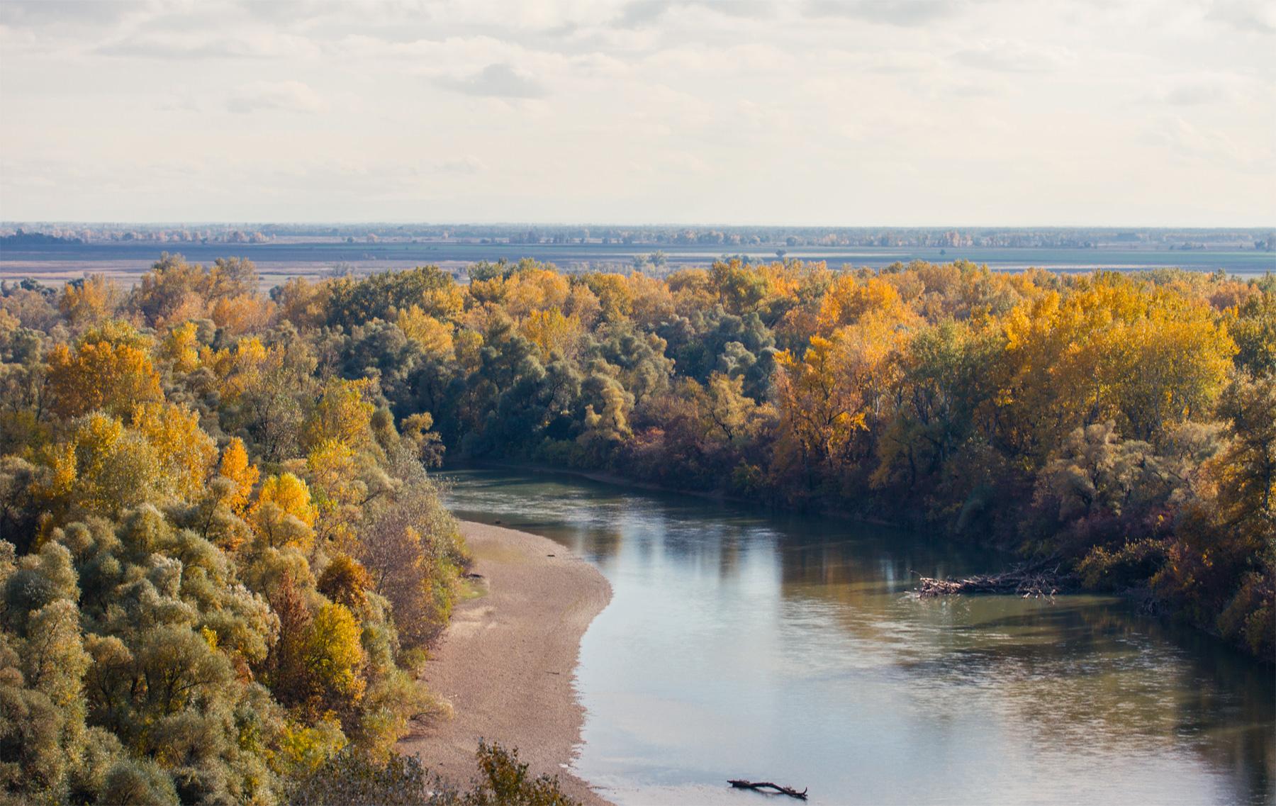 Дорога Армавир-Курганинск-Краснодар