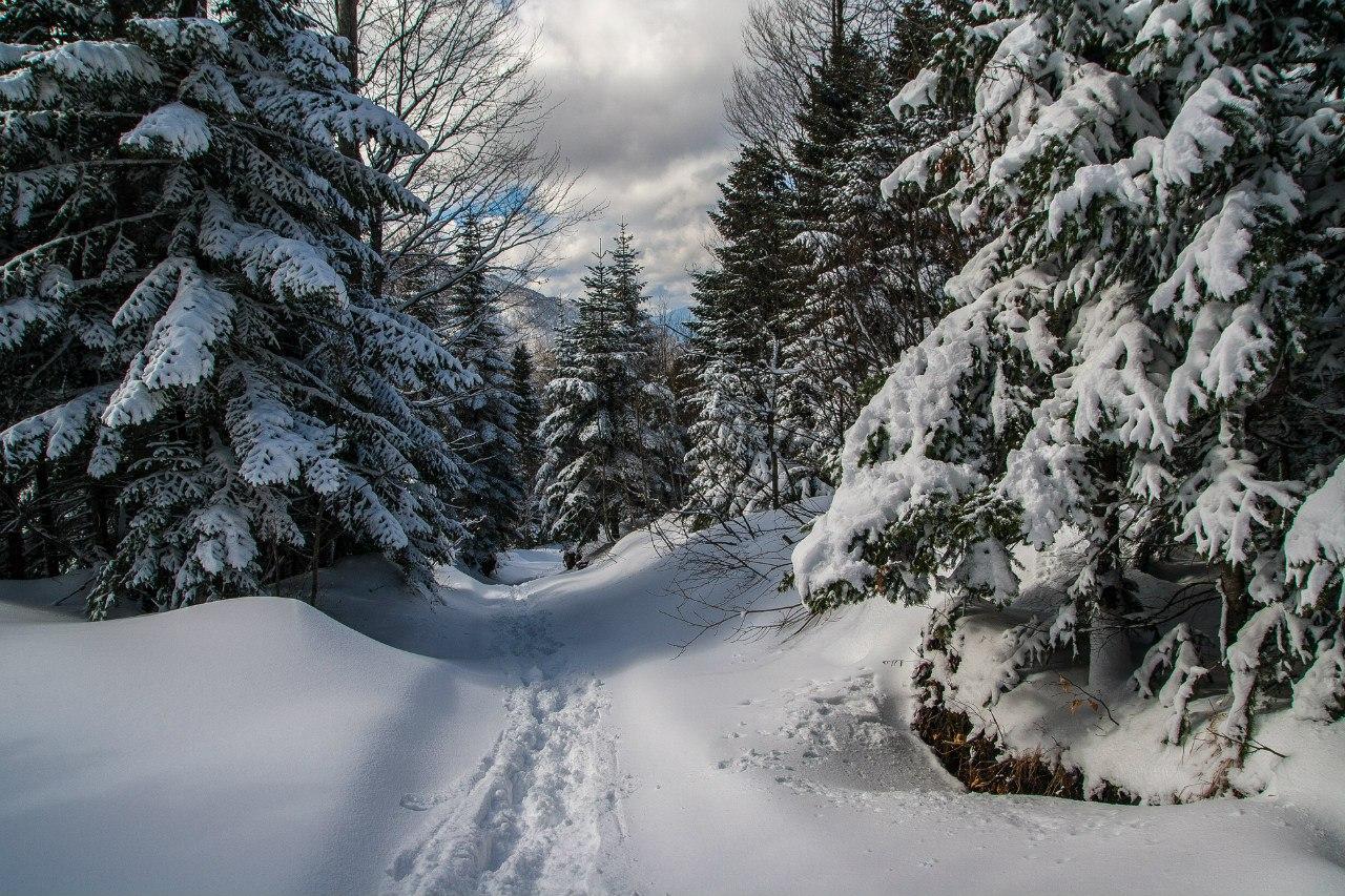 Снегоступпинг на Фишт, Новотур