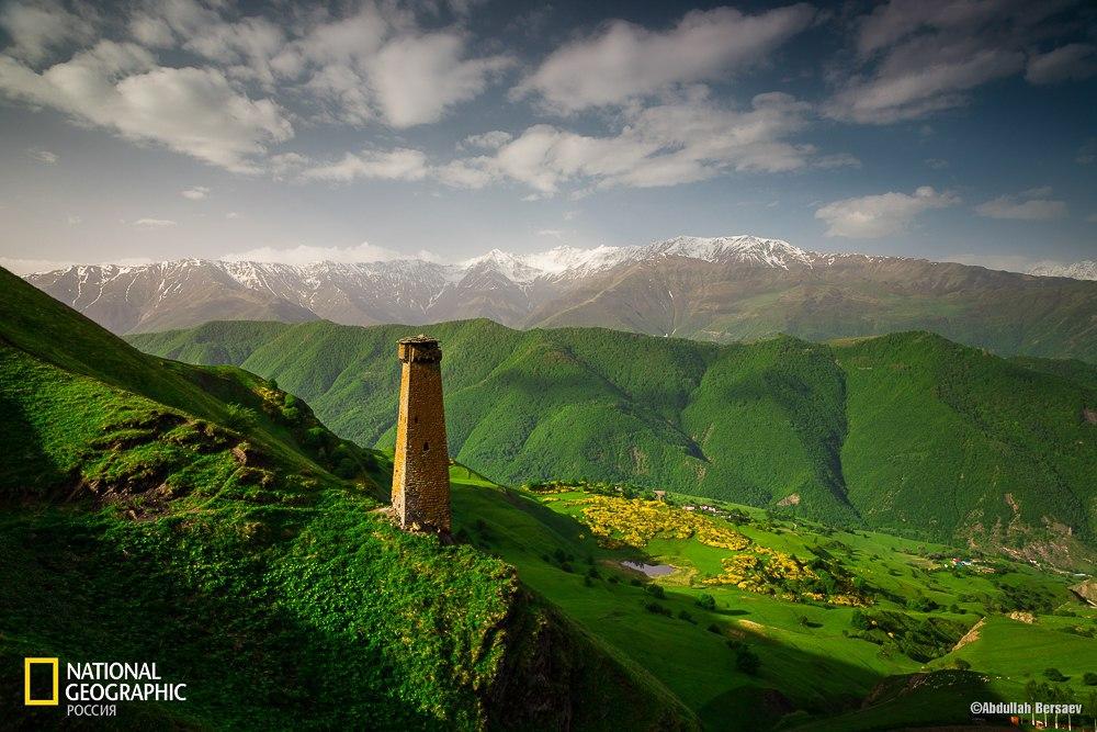 Чеченская башня
