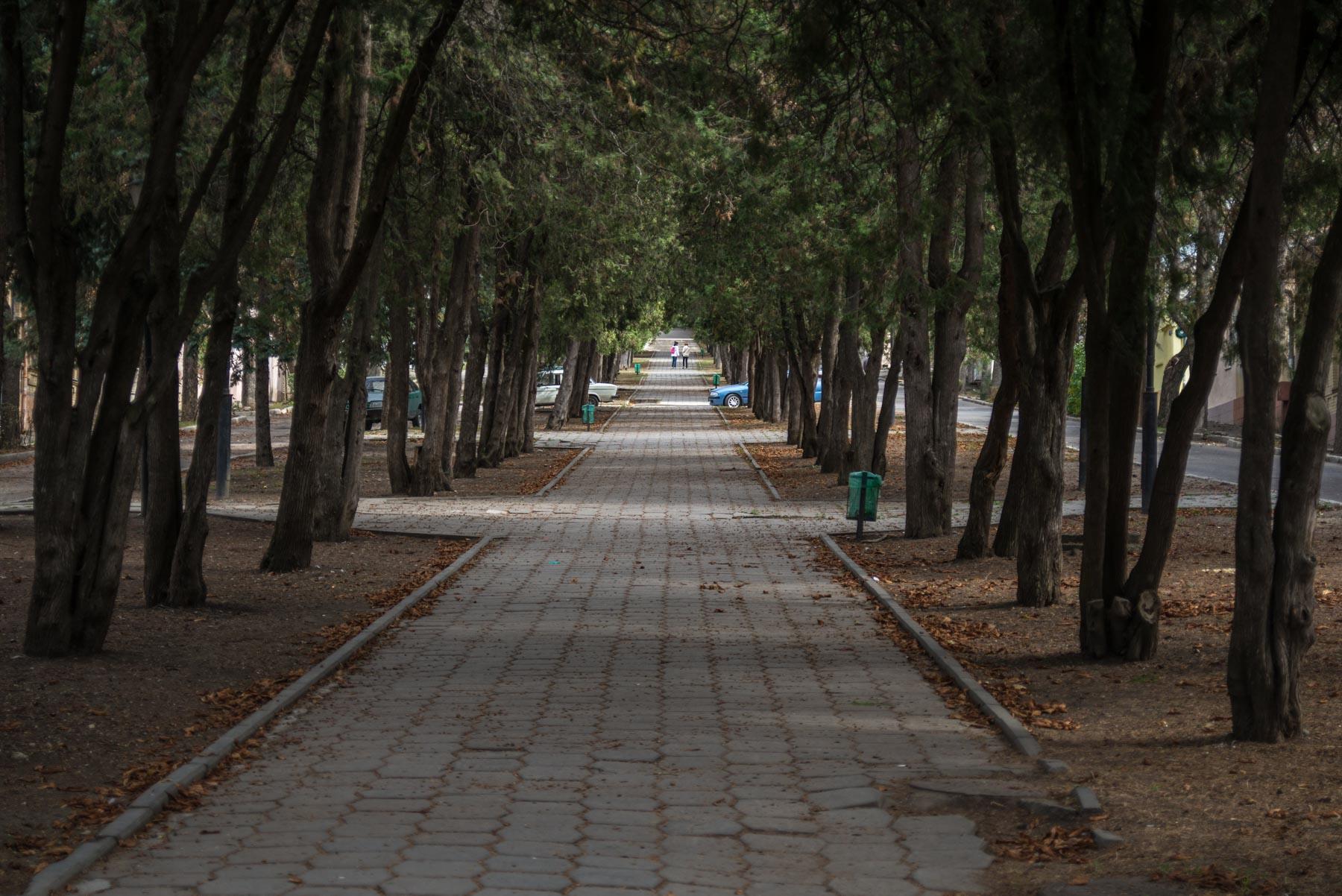 Парк Цветник