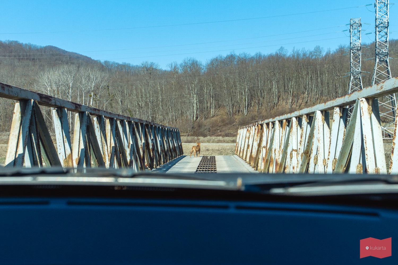 Мост к хутору Полковничий