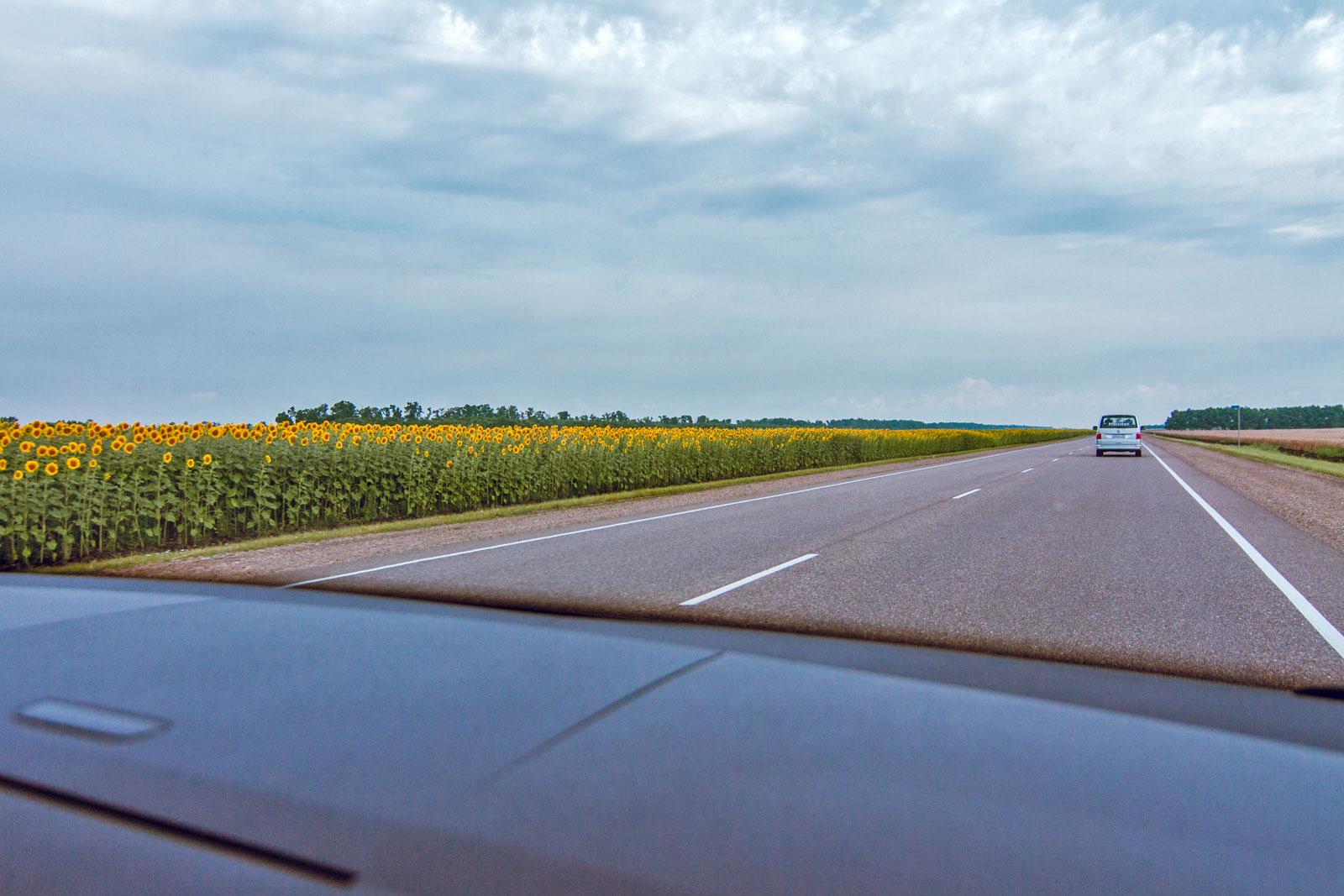Дорога в Ейск из Краснодара - Кукарта