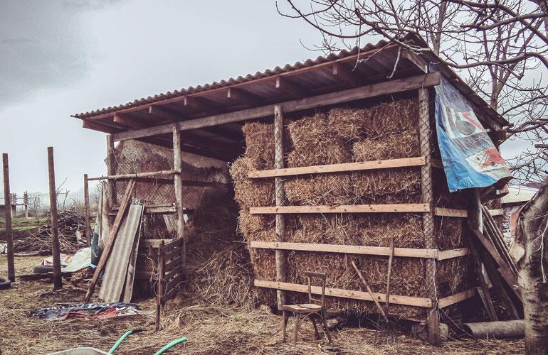 Сельский музей-усадьба «Дарица», фото Сергей Шульга