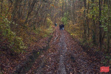 Путь к ущелью Волчьи ворота