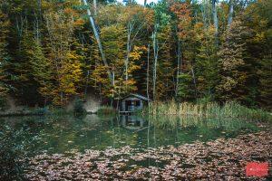 Черепашковое озеро, Крым