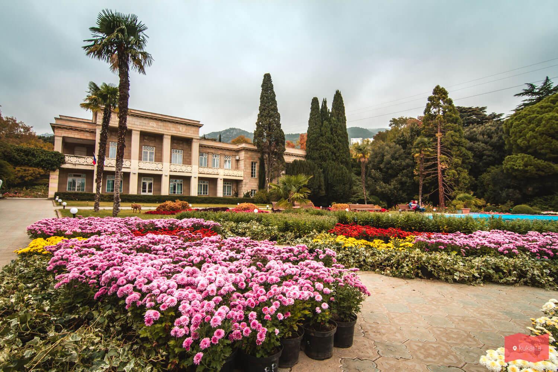 никитинский ботанический сад в ялте фото кого покалечил