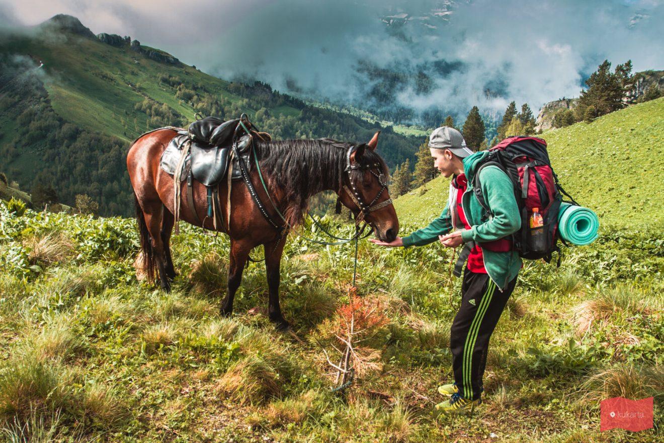 Конные прогулки в Краснодарском крае