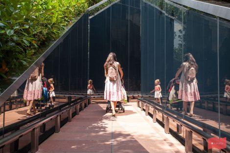 Зеркальный лабиринт в парке Краснодар (парк Галицкого)