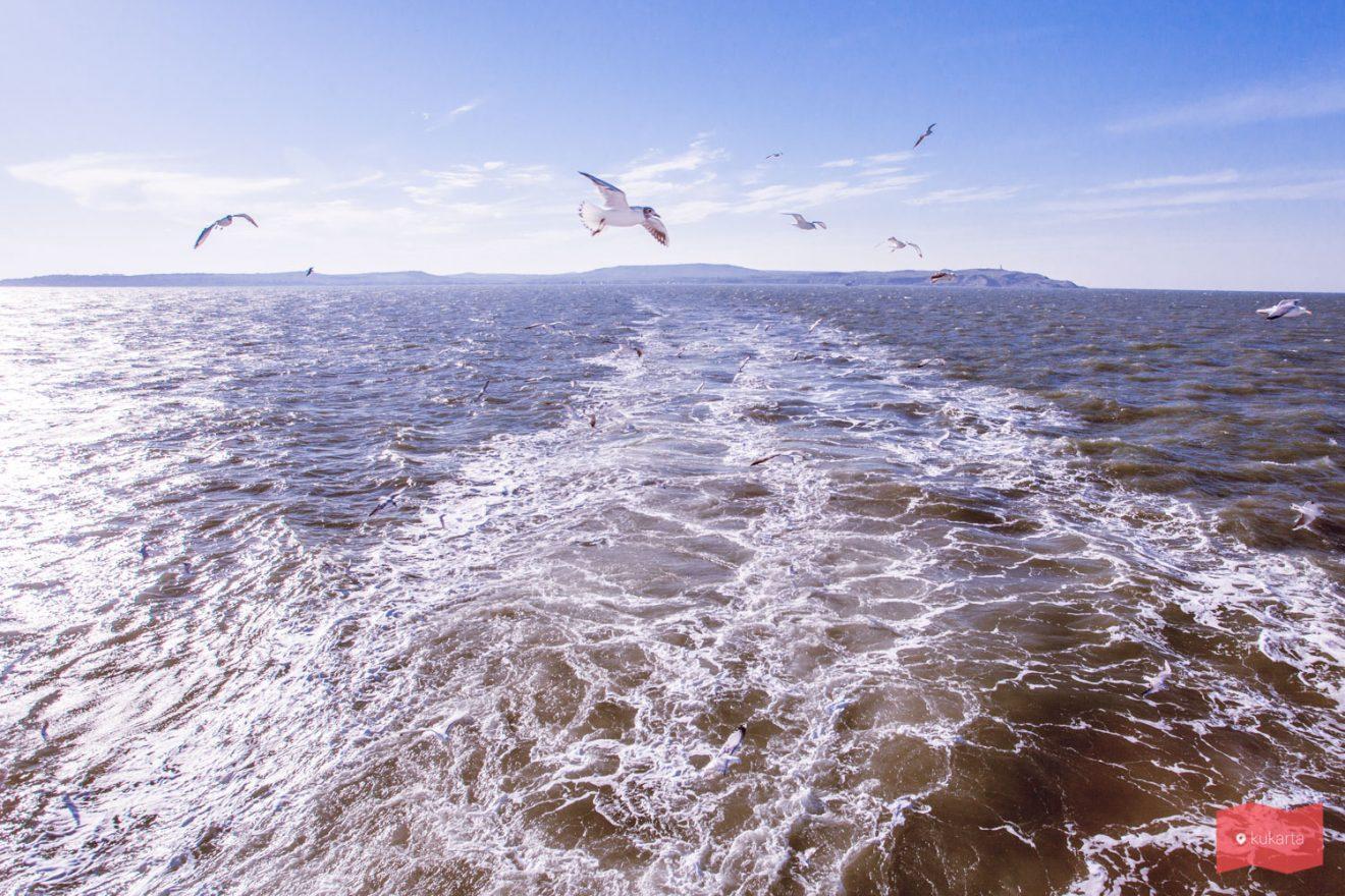 Море близ Керчи